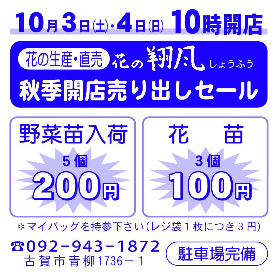 花の翔風9-20
