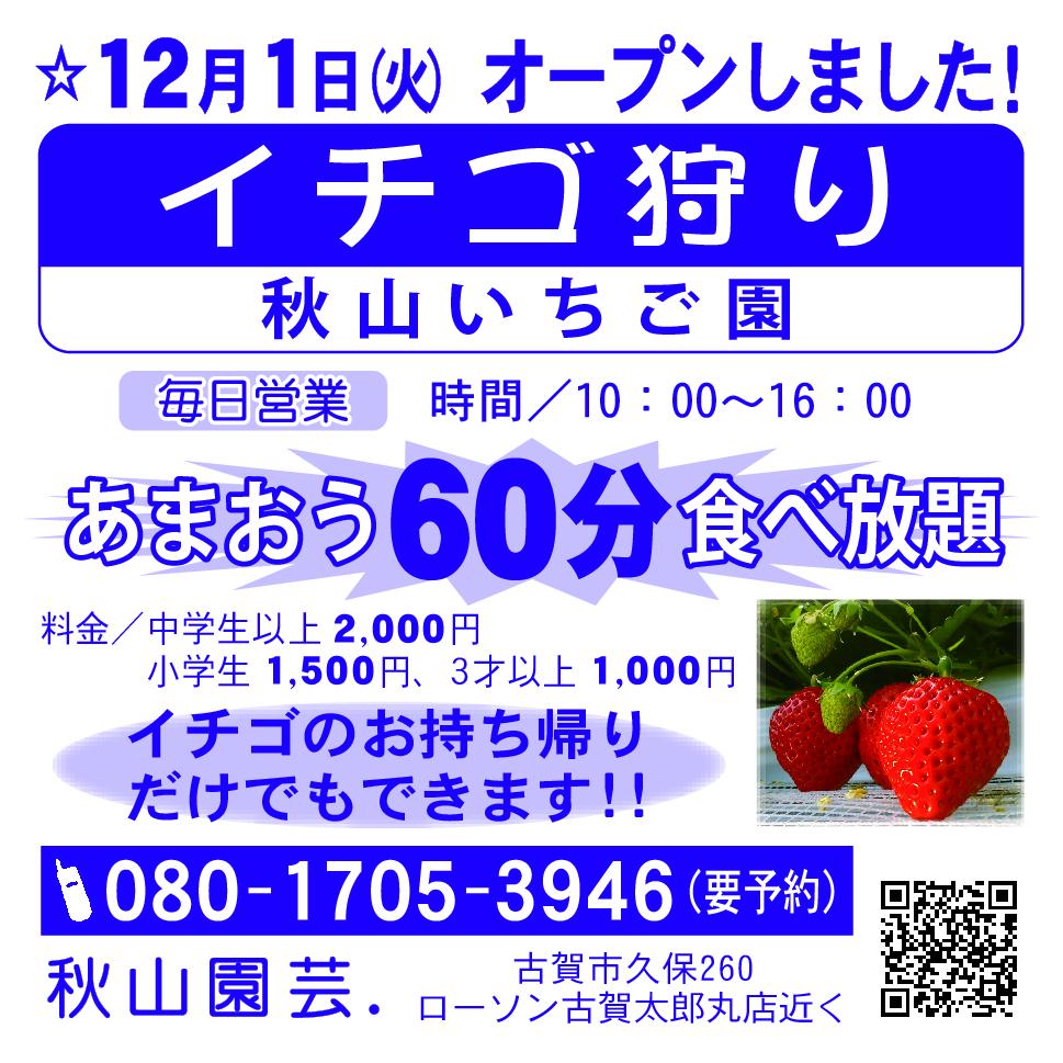 秋山園芸12-6